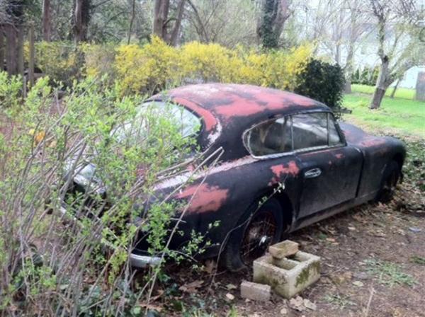 1955 Aston Martin Db24 In Field