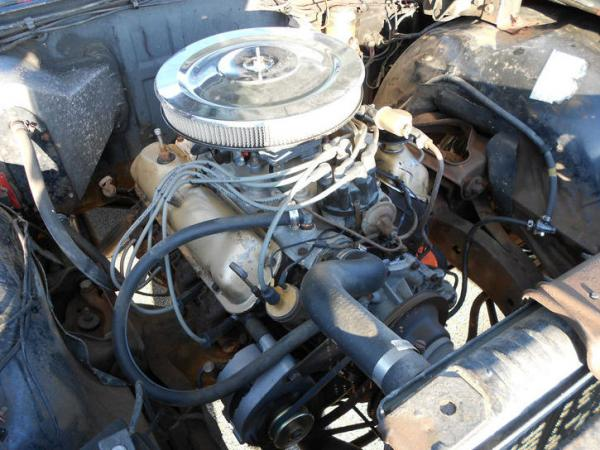 1965 Ford Country Squire Engine