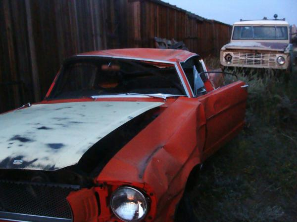 1965 Ford Mustange Fastback Front Corner In Field