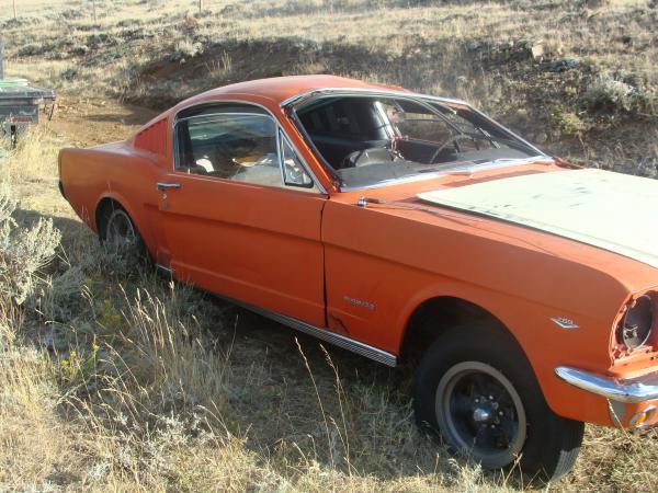 1965 Ford Mustange Fastback Side In Field