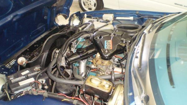 1977 Amc Pacer Engine