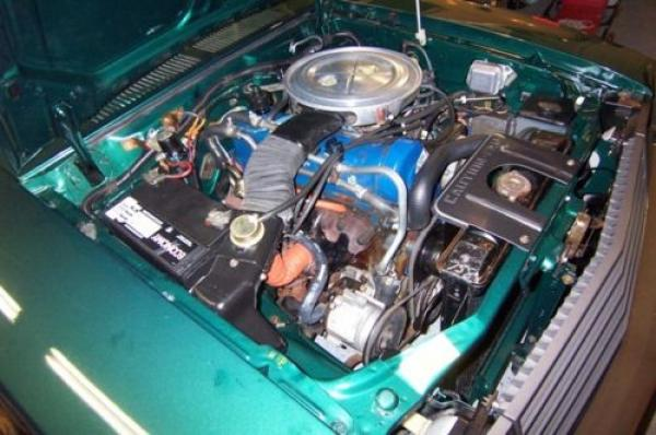1979 Ford Pinto Engine