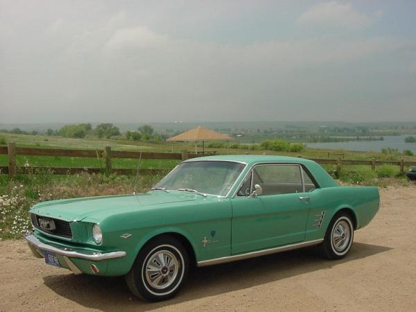 Mustang Hcs