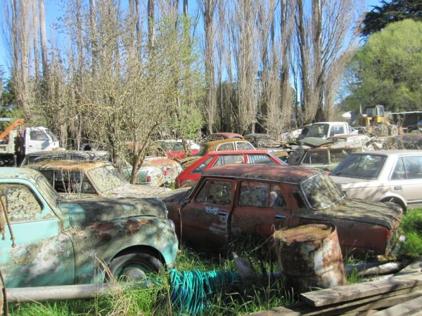 New Zealand Car Graveyard