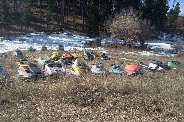 Field Full Of Vintage Snowmobiles