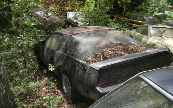 Huge Stash Of Cars In South Carolina