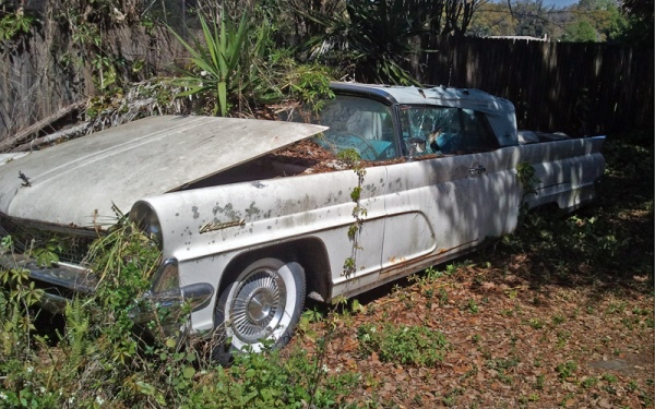 overgrown-1959-lincoln-continental