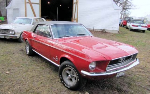 the-johnson-collection-ford-mustang