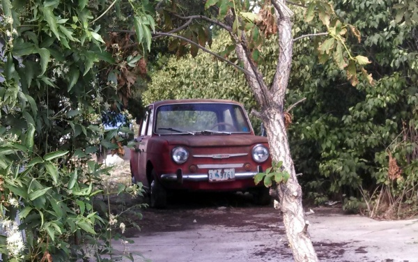 Back Alley Simca Sighting