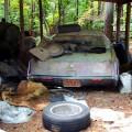 NC Find Cadillac 6