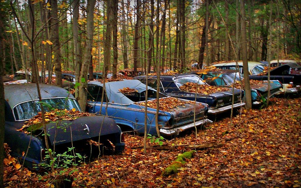 New York car Graveyard