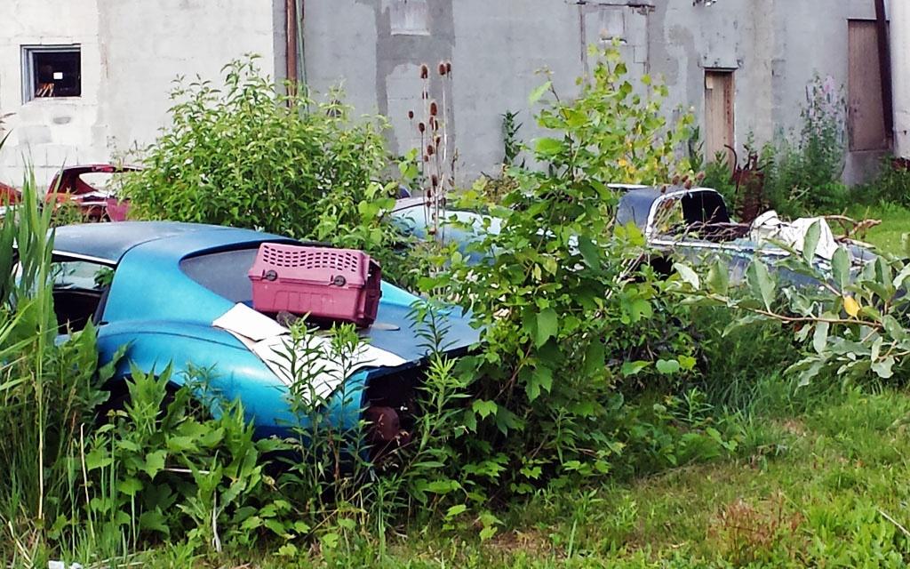 Upstate Corvette Graveyard 2