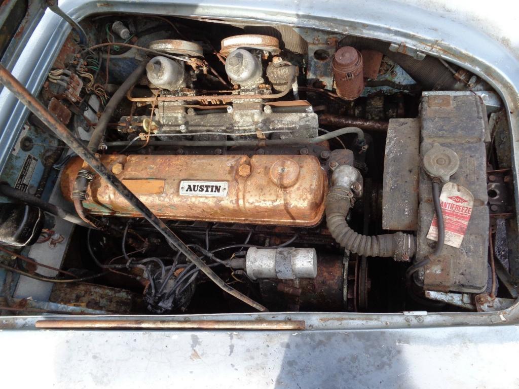 blue-healey-engine