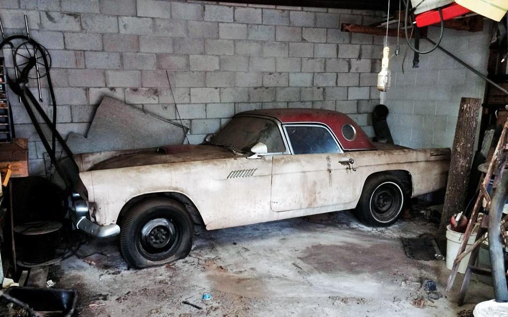 Garage Bird 1955 Ford Thunderbird