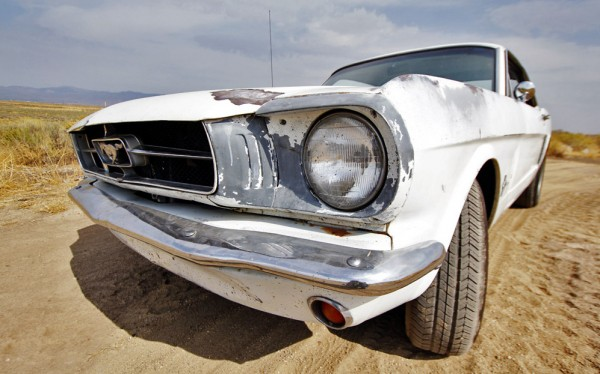 BF-Mustang