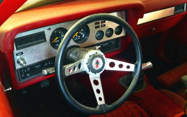 Mustang King Cobra Interior