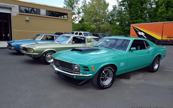 Shelby-Mustangs