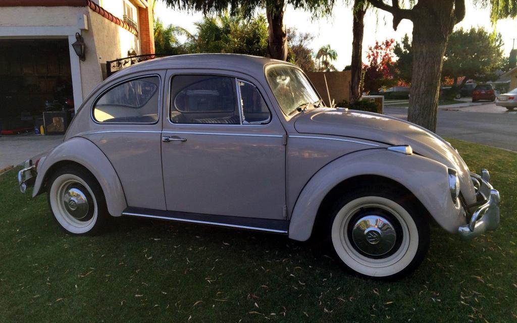 Survivor Or Restored 1967 Vw Beetle