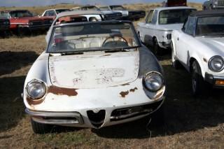 1969-Alfa-Romeo-Spider