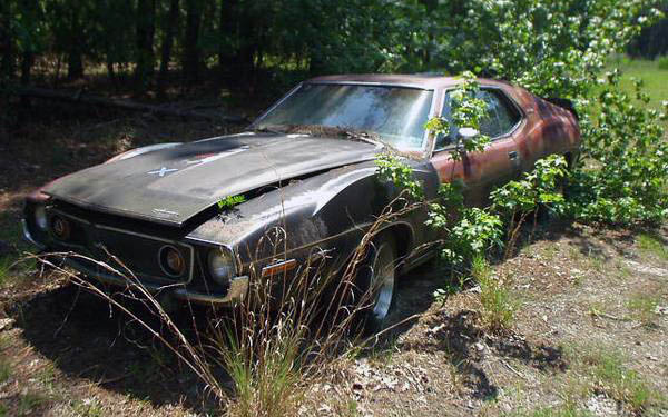 1973 AMX Piere Cardin