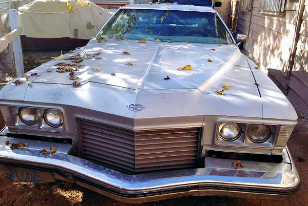 Buick Riviera Grille