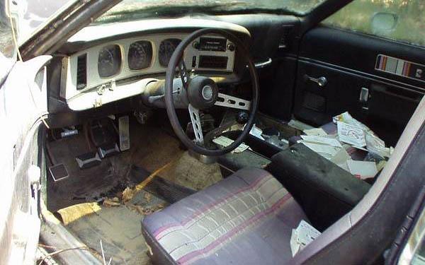 Piere Cardin AMX Interior