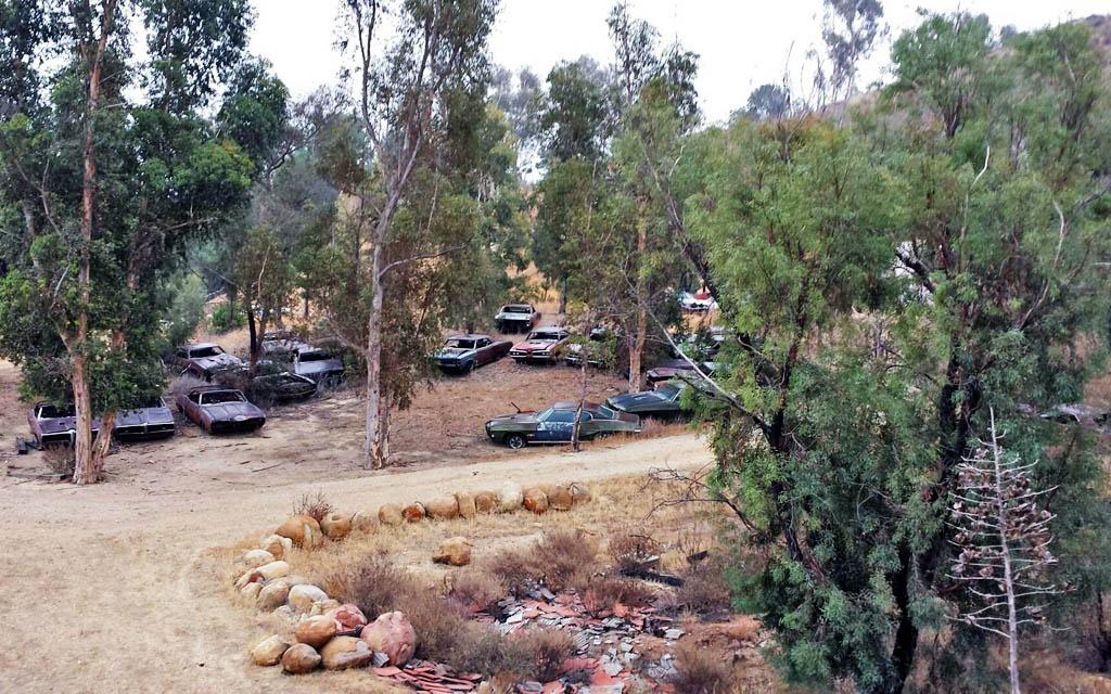 Pontiac GTO Graveyard
