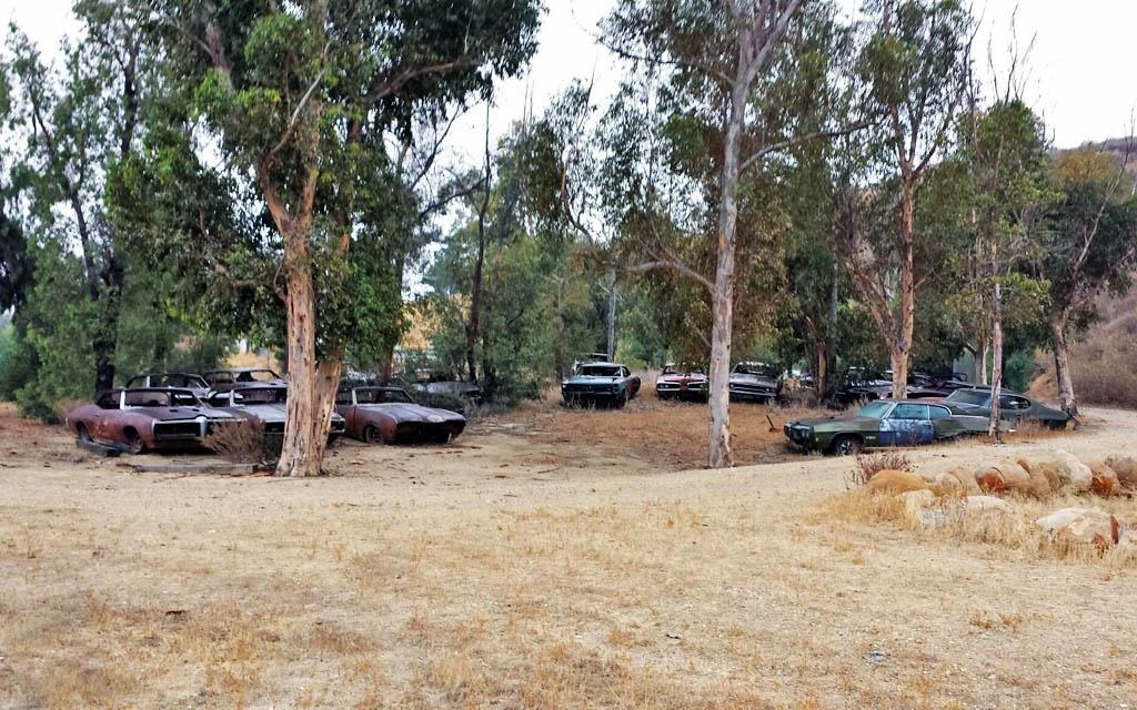 The GTO Graveyard
