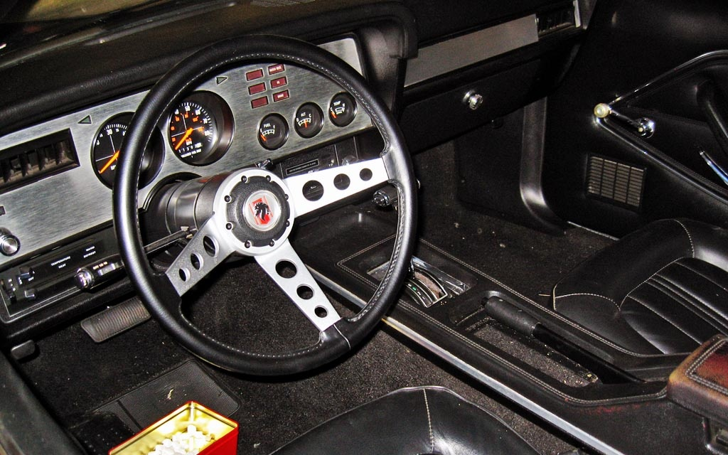 Mustang Interior Paint