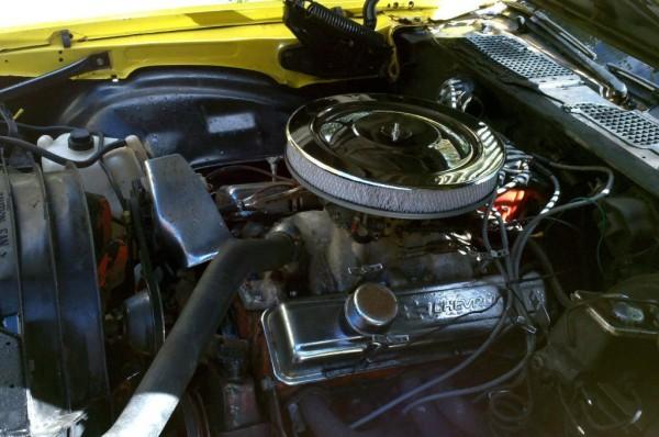 1979 Chevy Camaro Z28 Engine