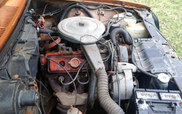1976 Chevrolet Chevette Engine