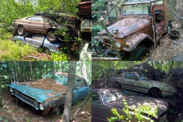 Return to the forest junkyard