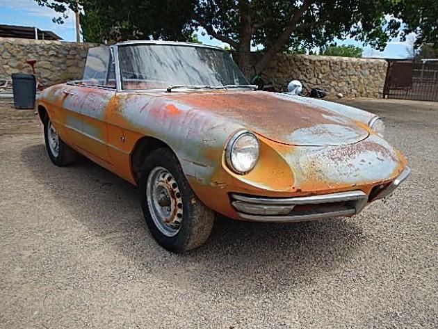 Alfa Romeo Spider Duetto Texas Sunburn - 1967 alfa romeo spider for sale