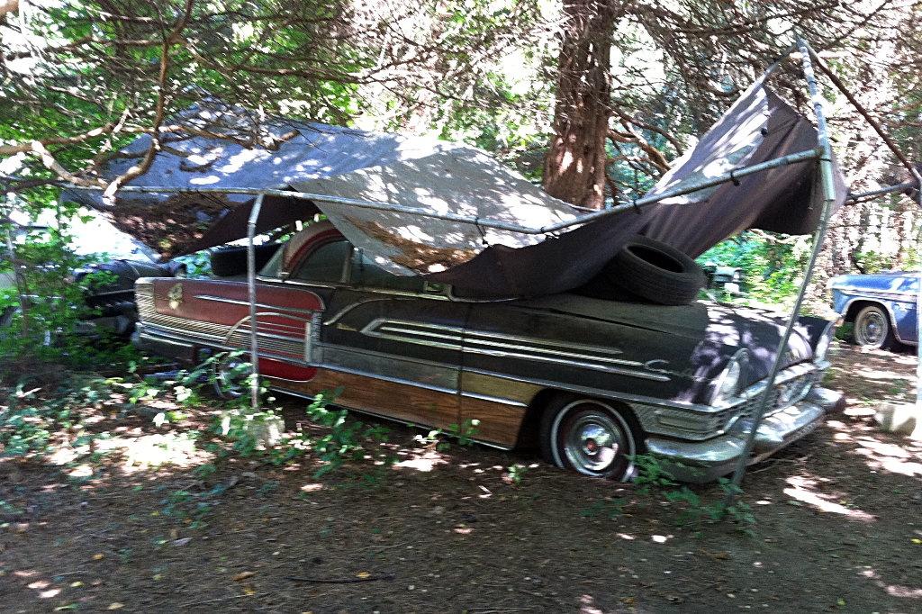 Custom Car Museum Or Salvage Yard?