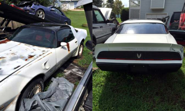1981 Pontiac Trans Am Recaro Edition