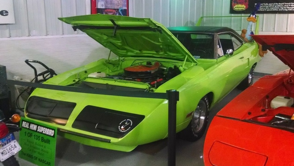 The World\'s Most Expensive Superbird?