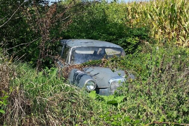 Overgrown Mercedes