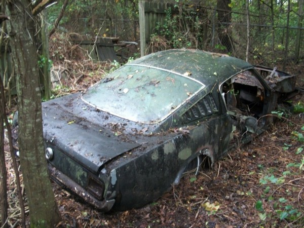 '65 Mustang forest find