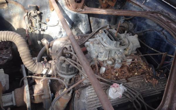 Shelby 289 V8