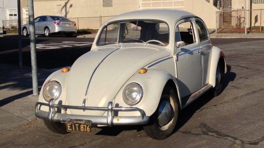 Black Plate Beetle 1964 Volkswagen Beetle