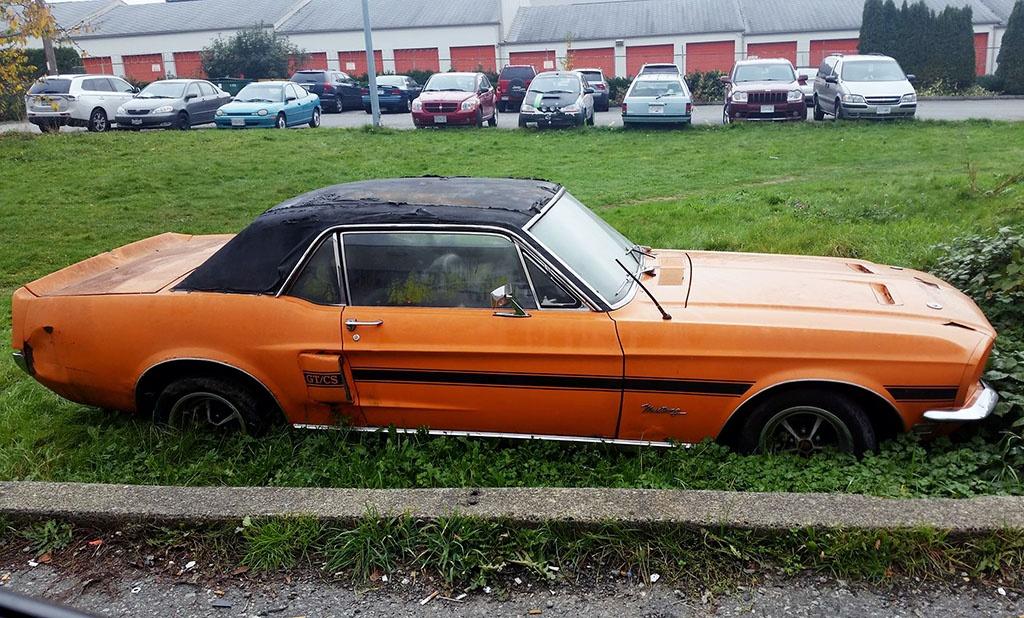 Abandoned 1968 Mustang GT/CS In Canada