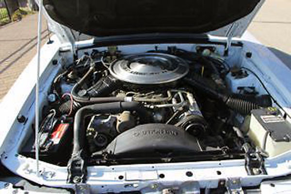 1984 Mustang GT350 Engine
