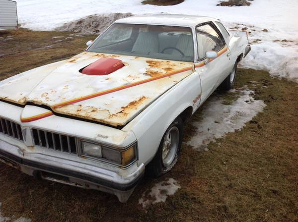 Can You Take It On 1977 Pontiac Can Am