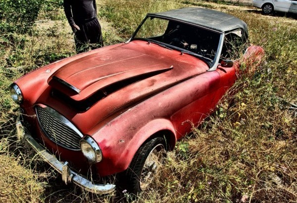 Out Of The Weeds 1959 Austin Healey 100