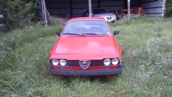1975 Alfa Romeo Barn Find