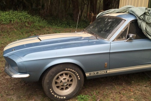 Barn Find Shelby GT350