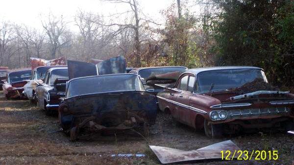 Impala Collection