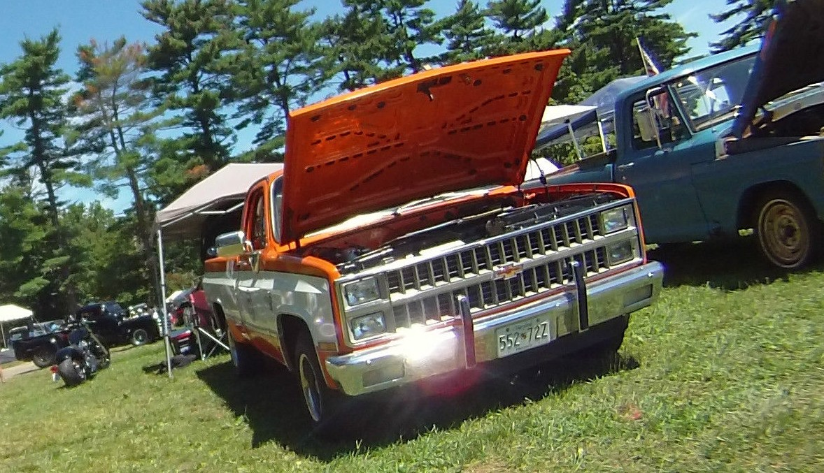 Truck 1981 chevy truck for sale : Last One Built: 1981 Chevy C10 Pickup
