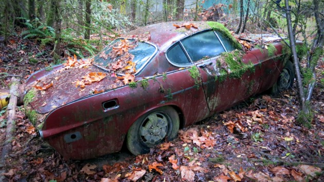 Volvo P1800 In the Forest