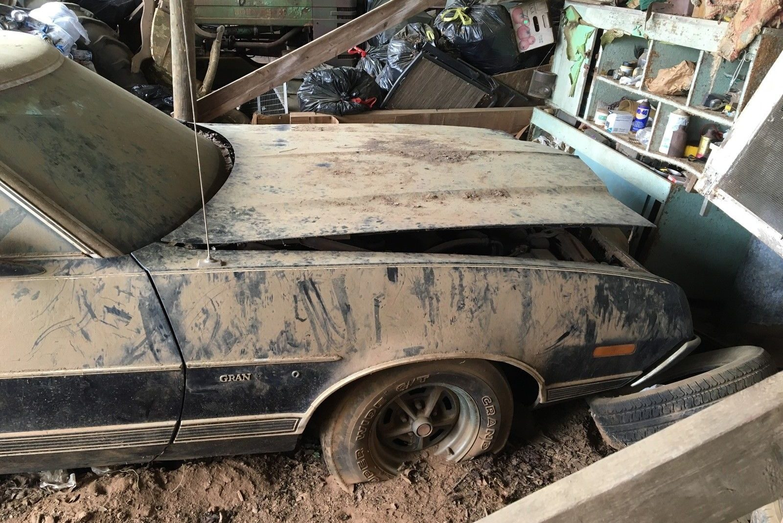 True Barn Find At No Reserve: 1972 Ford Gran Torino